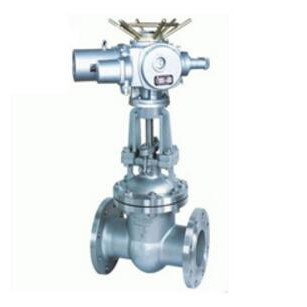 Stainless steel electric gate valve